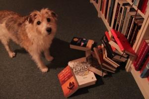 Indi Bücherstapel umgefallen