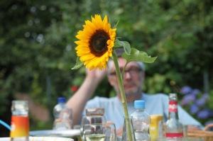 Die letzte Sonnenblume